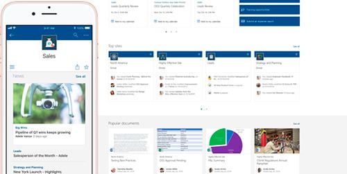 Microsoft Office 365 SharePoint